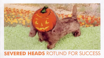 Severed Heads - Rotund For Success1
